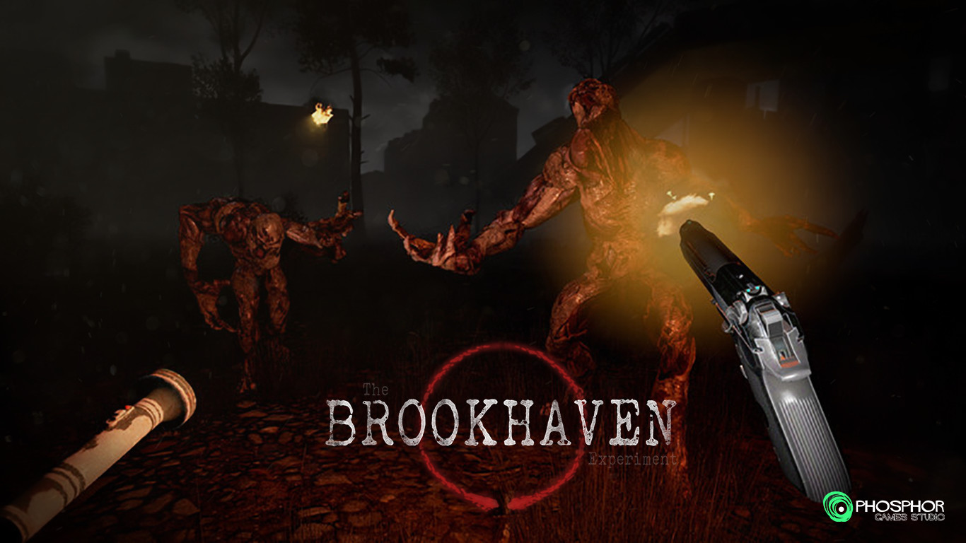 Brookhaven Experience